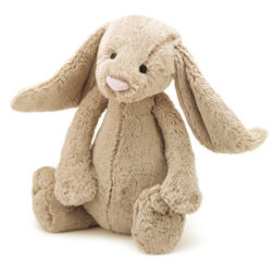 Image of the bunny